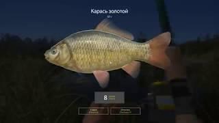 Русская рыбалка 4 - озеро Старый Острог - Садок карасей у брода