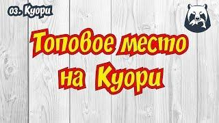 РУССКАЯ РЫБАЛКА 4! ЛУЧШЕЕ МЕСТО НА КУОРИ!